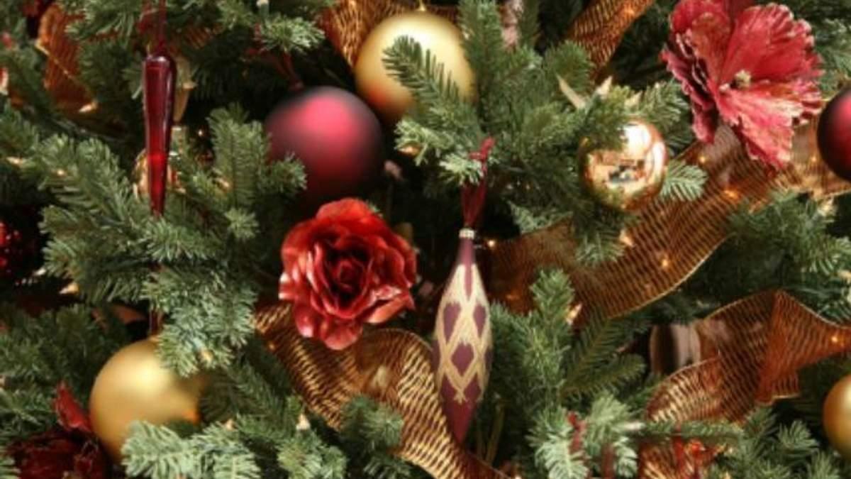 Медики застерігають: новорічні ялинки небезпечні для здоров'я