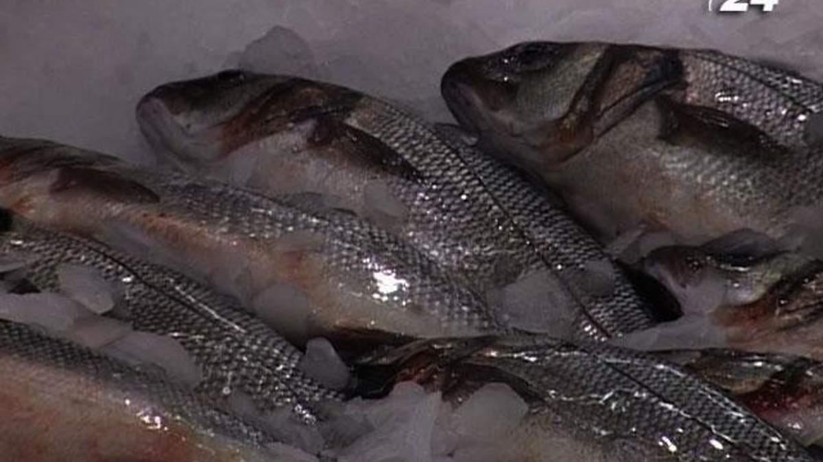Крупним планом: Чи безпечна риба з українських водойм?