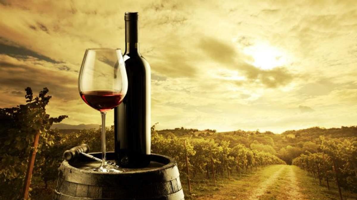 5 найпоширених міфів про вино