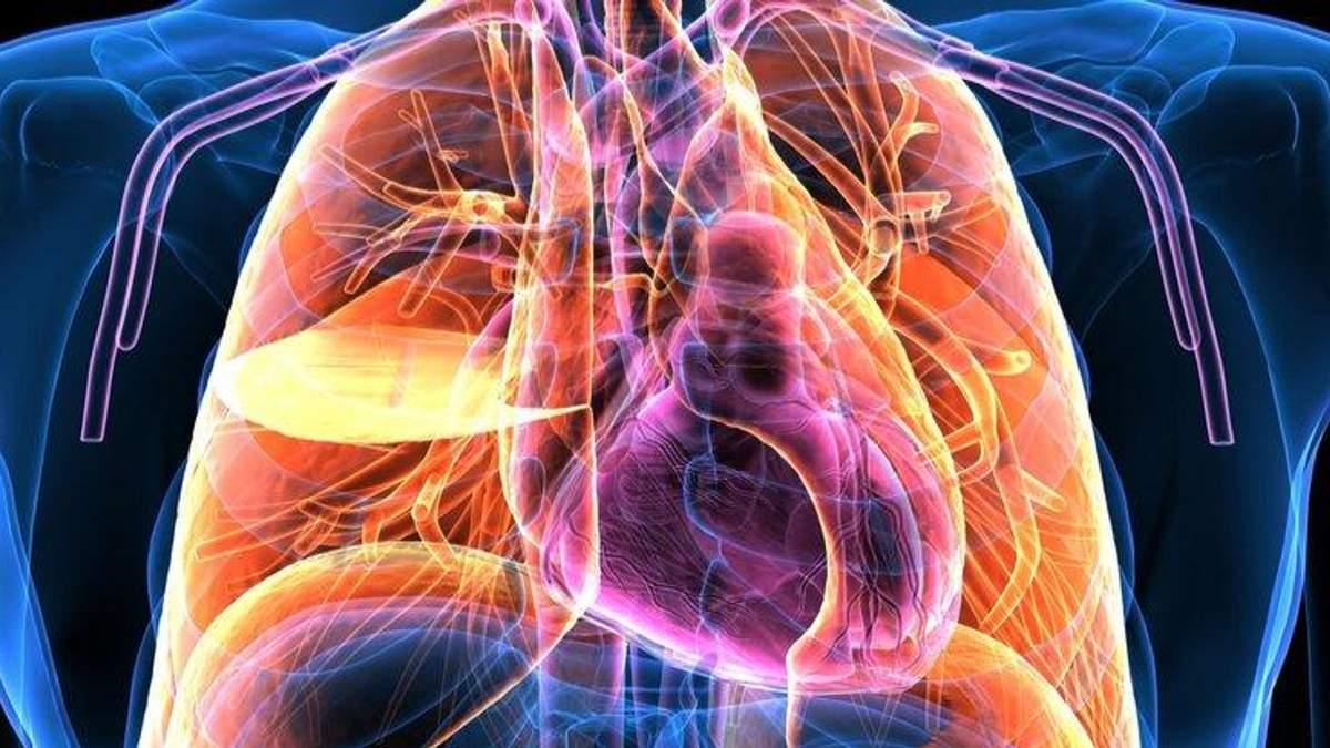 На органы тела теперь можно смотреть через камеру: новое изобретение