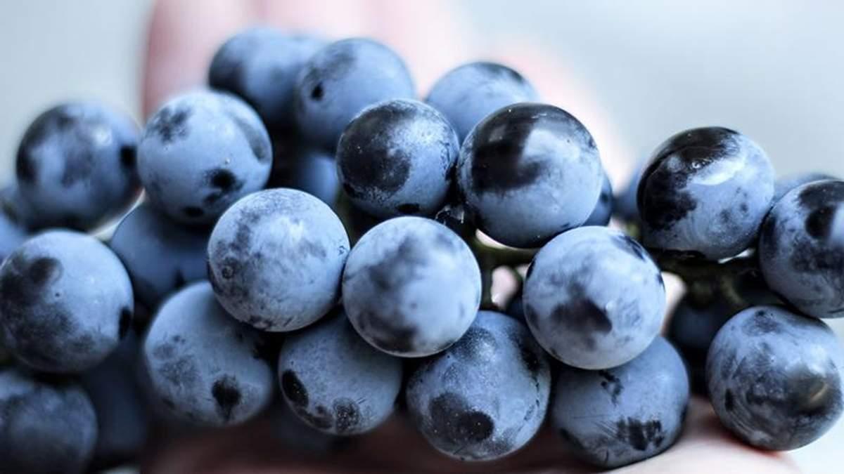 Резвератрол есть в красном винограде
