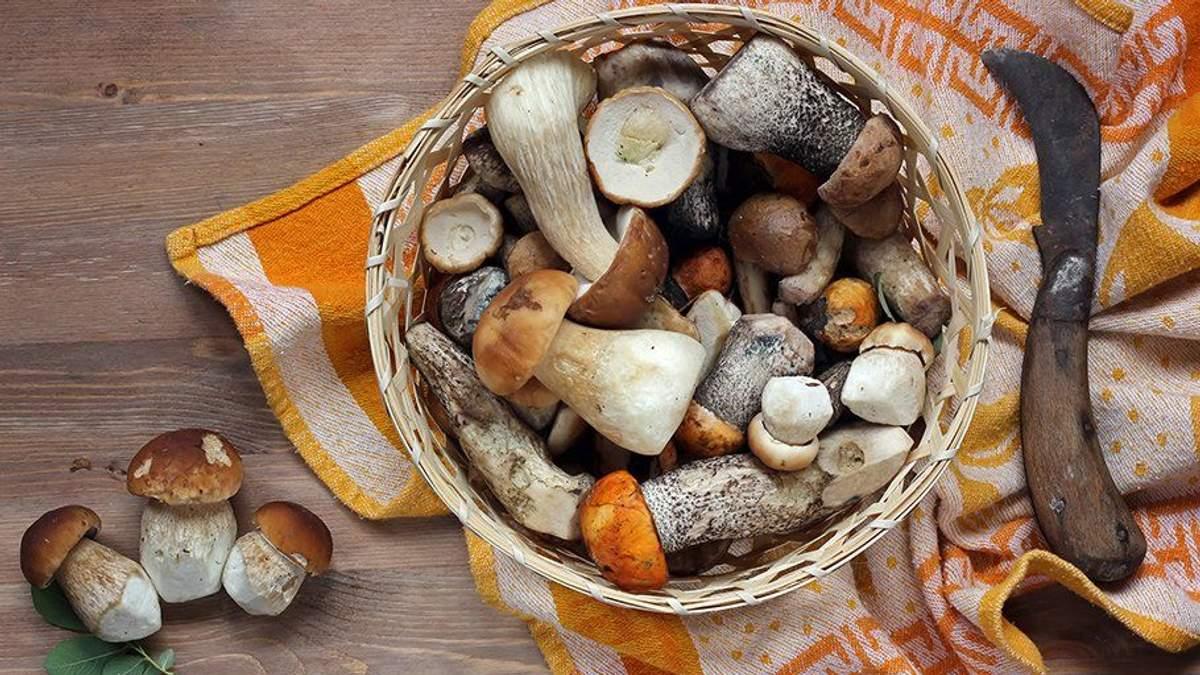 ТОП-7 порад, як правильно заморозити гриби на зиму