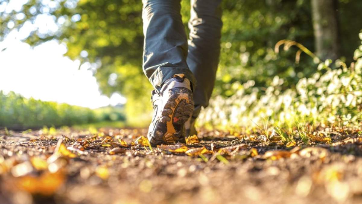 Чому потрібно більше ходити пішки