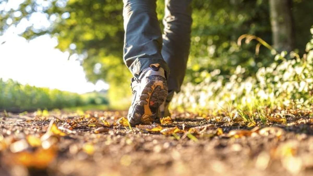 Почему нужно больше ходить пешком
