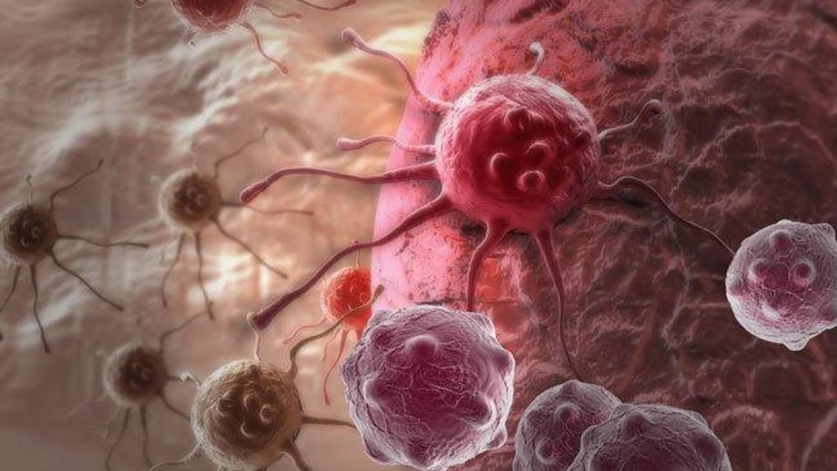 Вчені зробили прорив у вивченні раку