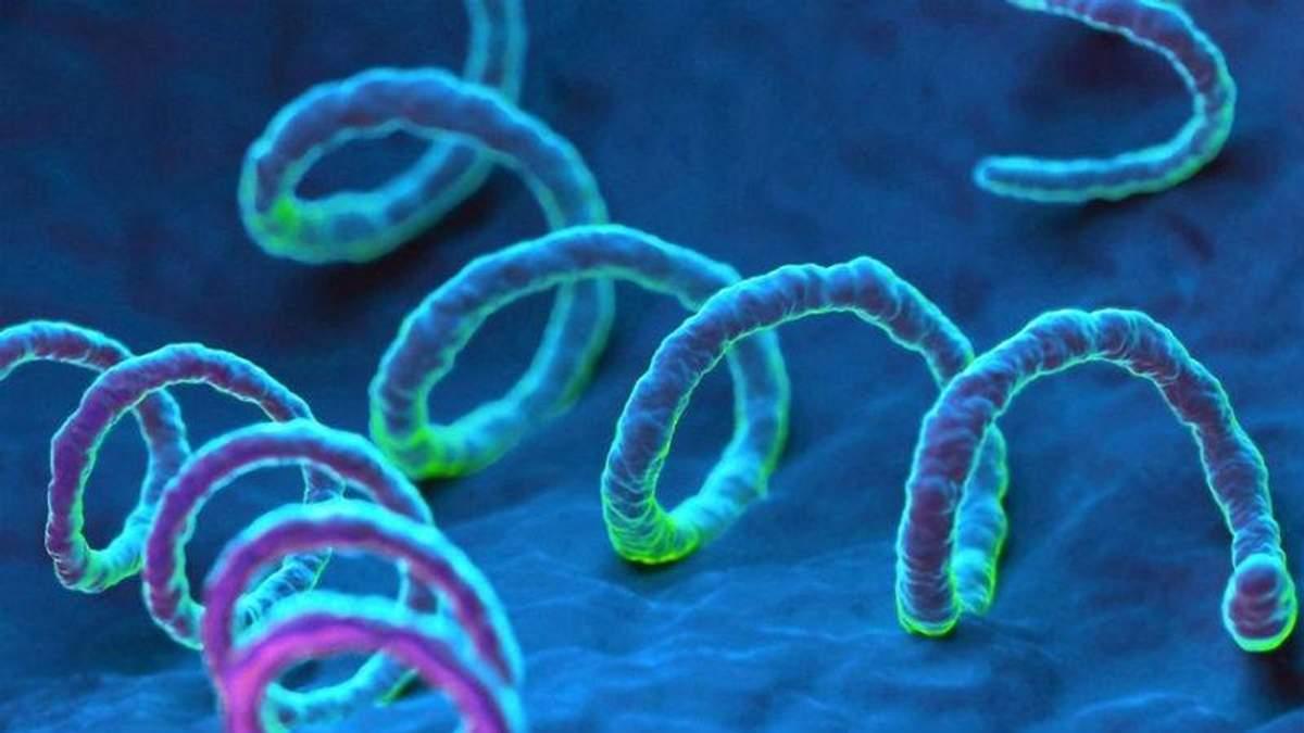 Искусственный интеллект сможет определять вспышки сифилиса