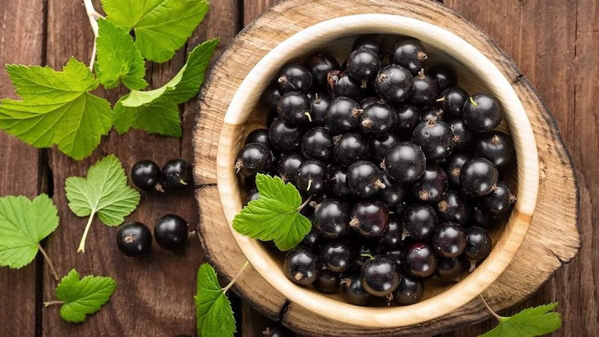 Польза черной смородины для здоровья: почему ее стоит есть