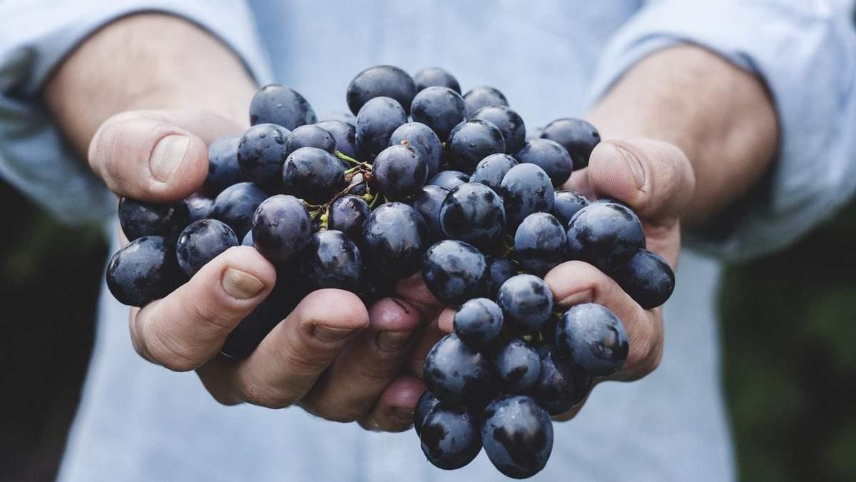Які фрукти корисно їсти з кісточками