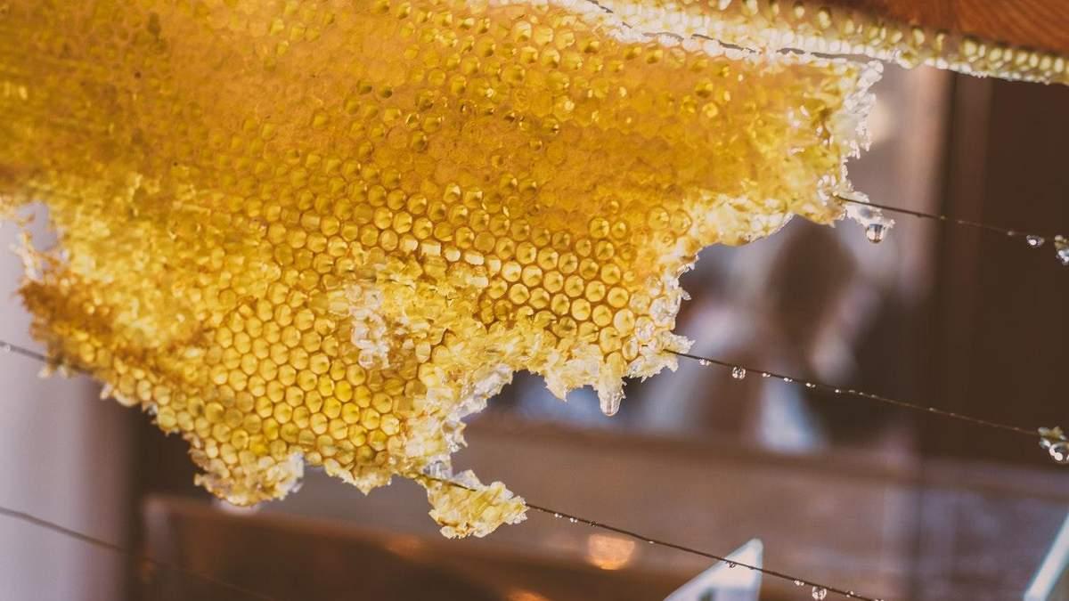 Мед спасает от атеросклероза