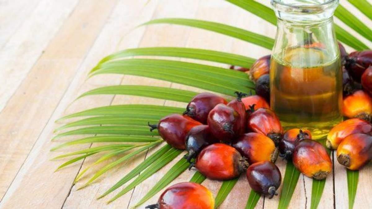 В Украине запретили опасное для здоровья пальмовое масло