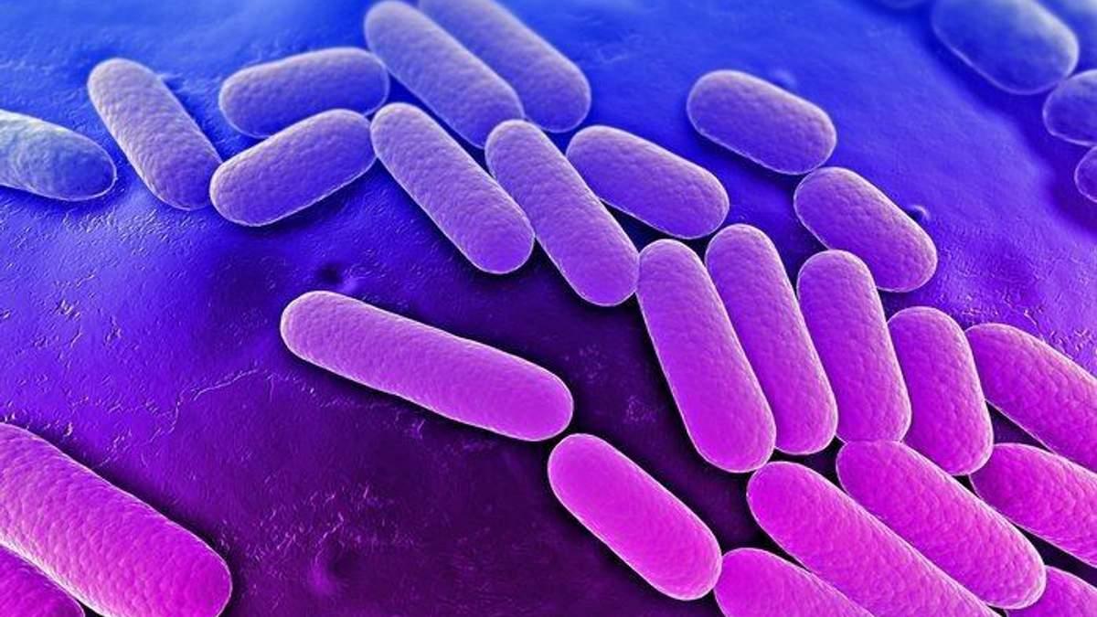 Американські вчені виявили нову небезпечну інфекцію