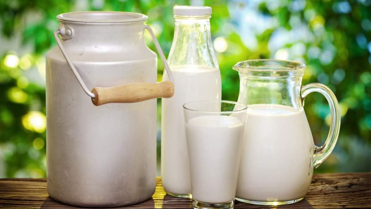 Козяче, рослинне чи коров'яче: цікаві факти про молоко
