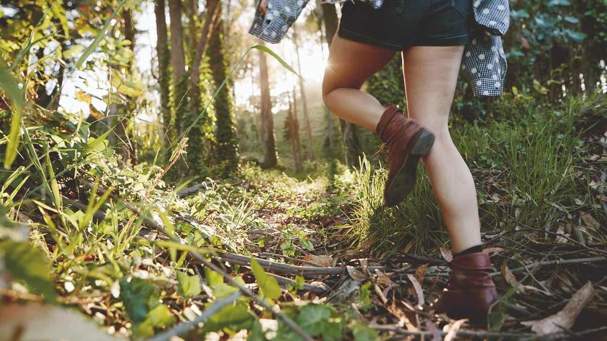 7 причин, чому варто ходити у ліс на прогулянку