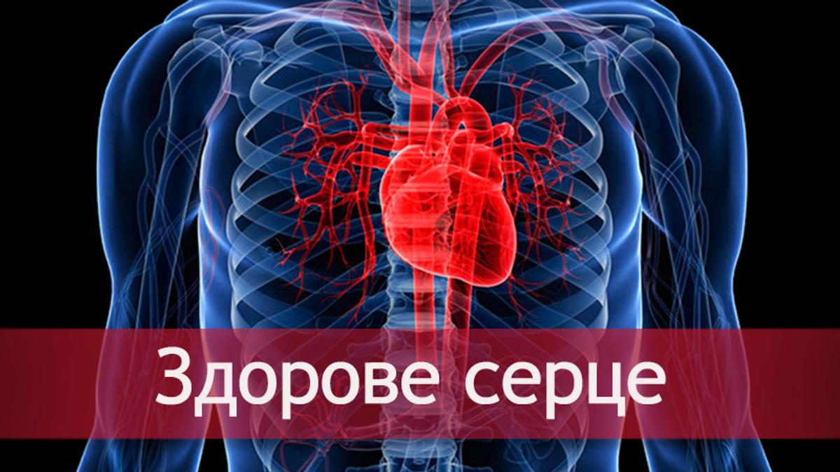 Серцево-судинні захворюваня: профілактика - як вберегтися
