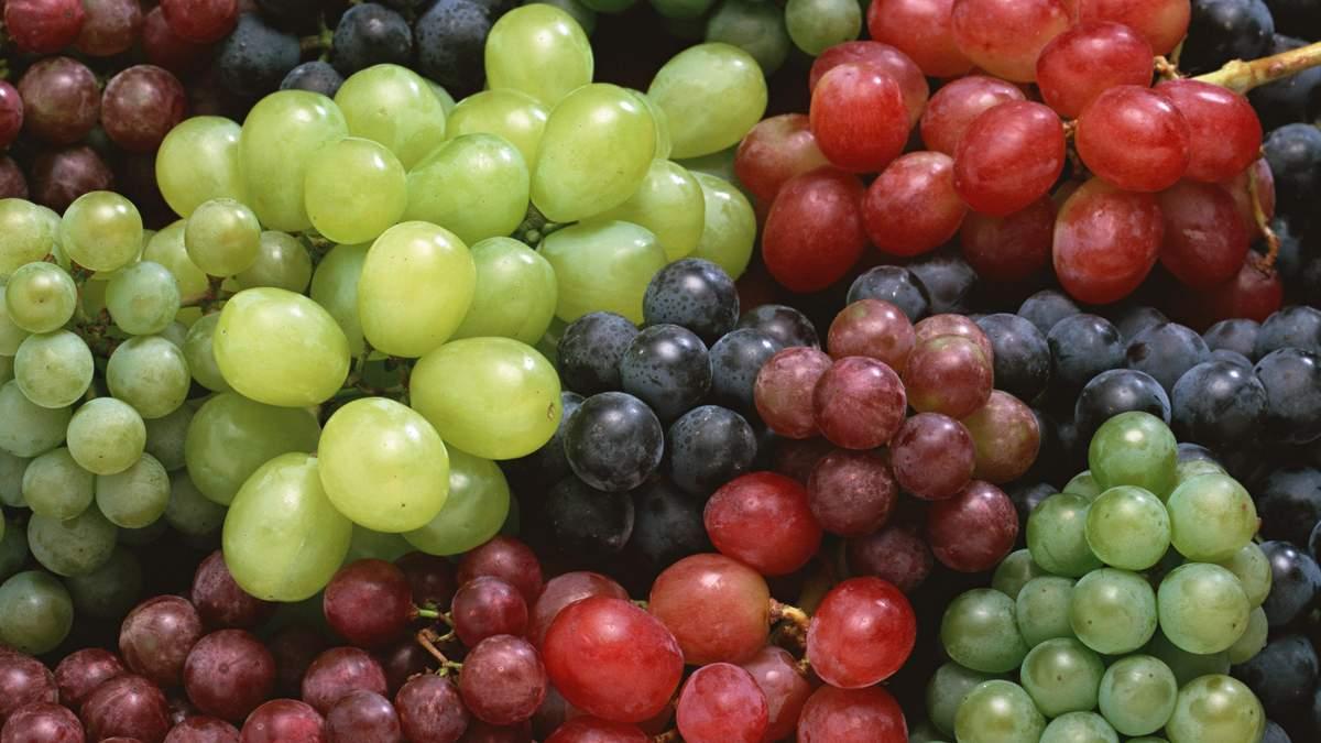 Науковці з'ясували, що шкірка винограду містить природній антибіотик, здатний побороти рак легенів