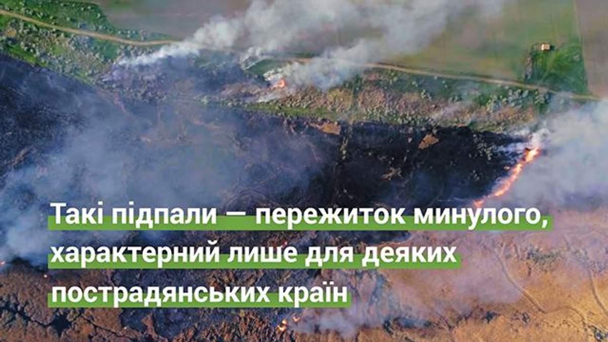 Супрун рассказала об опасности сжигания осенью сухой травы и листьев