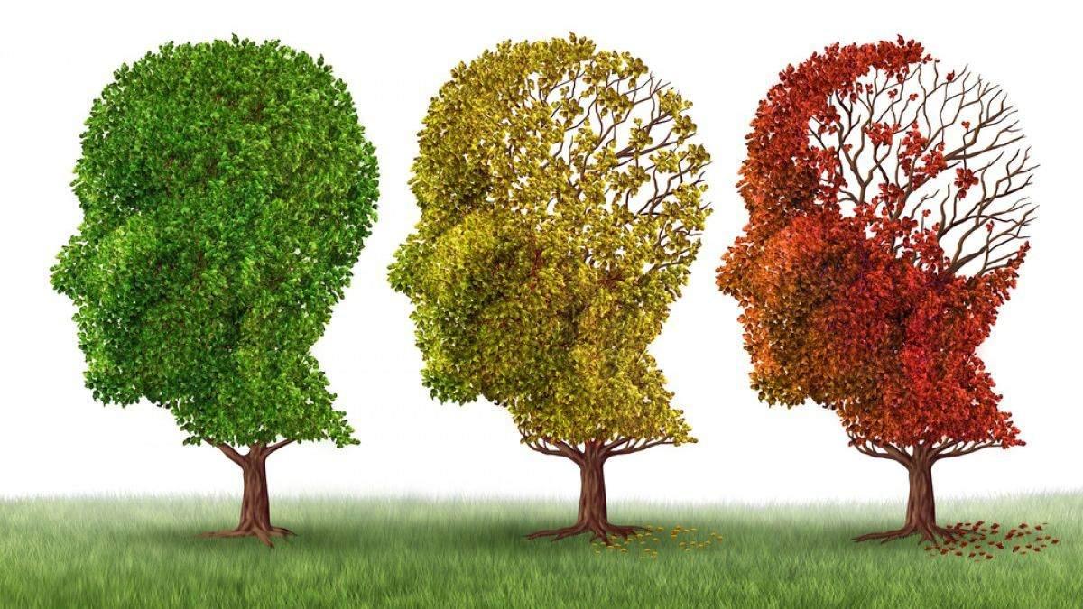 Вчені розробили ліки від хвороби Альцгеймера