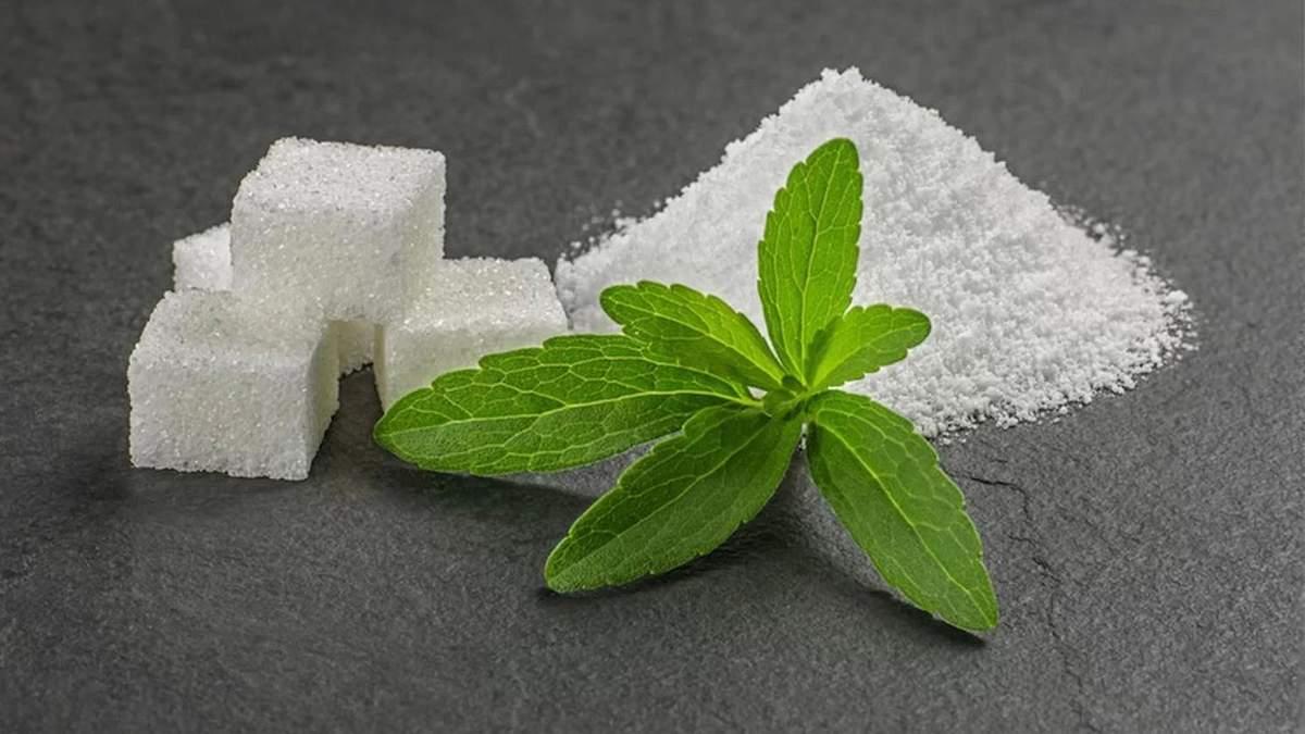 Стевія як замінник цукру: яка від неї користь