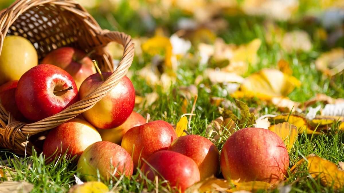 Яблоко обладает уникальными свойствами