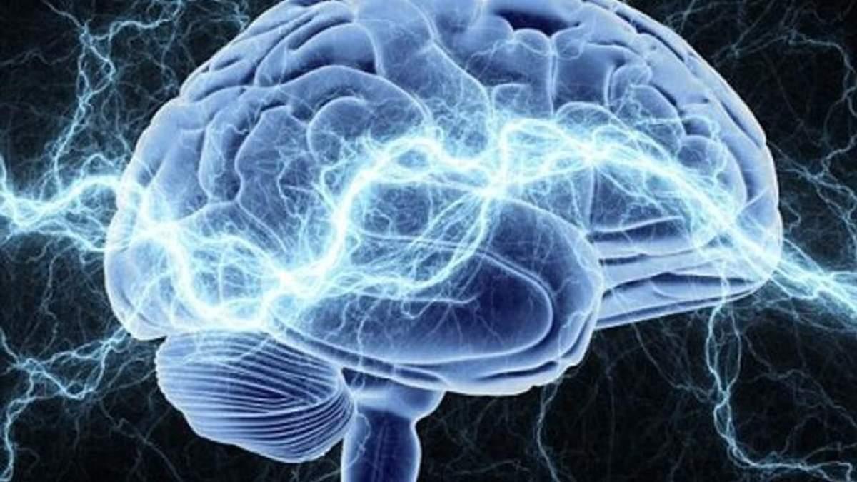Нейробіологи виявили невідому ділянку у людському мозку