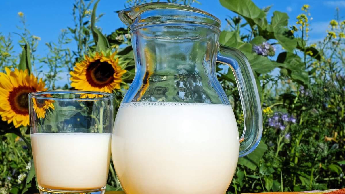 Користь молока та молочних продуктів для дорослих