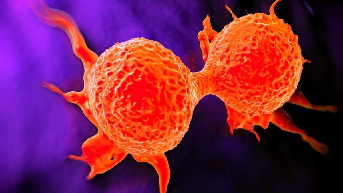 Вчені зупинили поширення раку, перетворивши онкоклітини на жир