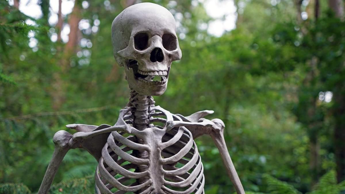 Удивляются, что не заметили раньше: ученые сделали неожиданное открытие в анатомии человека