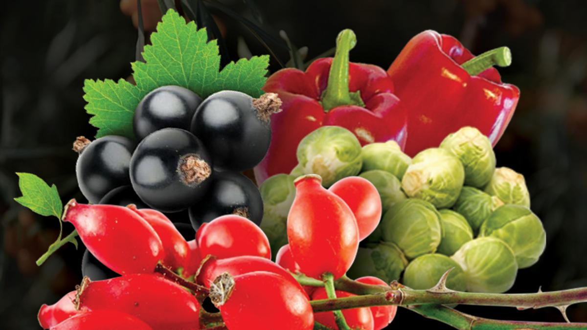 Курс на аскорбін: 5 продуктів із найбільшим вмістом вітаміну С