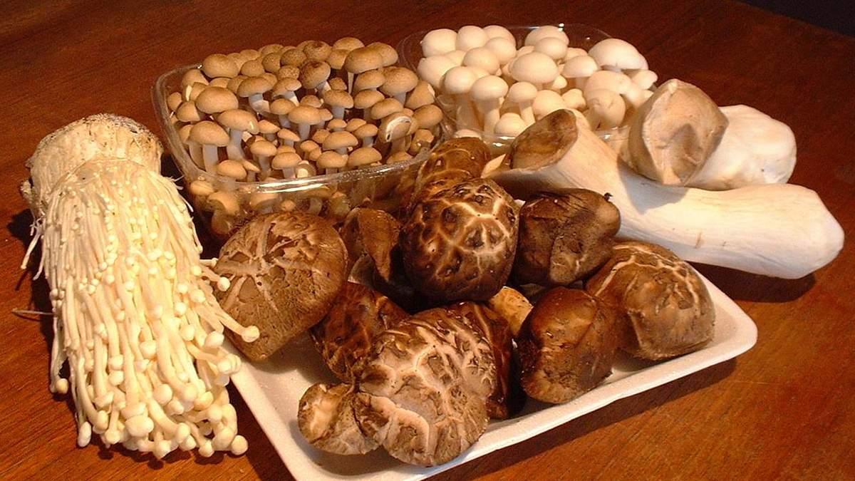 Як гриби вбивають онкохворих: пояснення Супрун