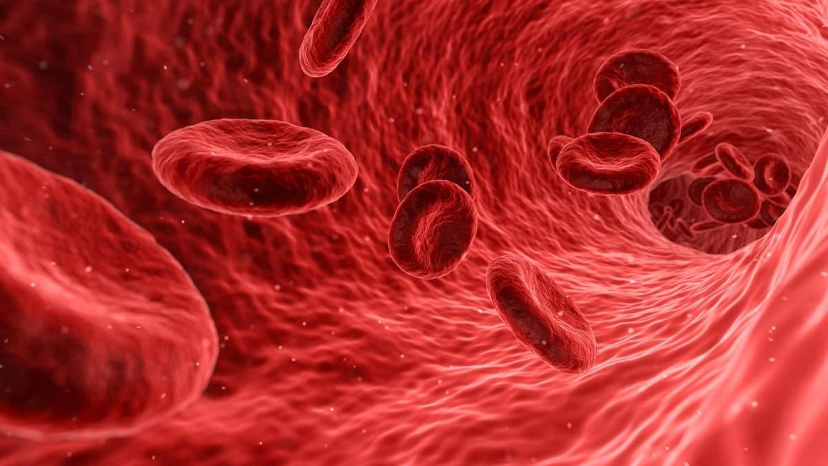 Гемофилия: лечение, симптомы, почему возникает