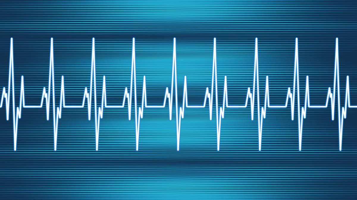 Из-за чего ускоряется сердцебиение