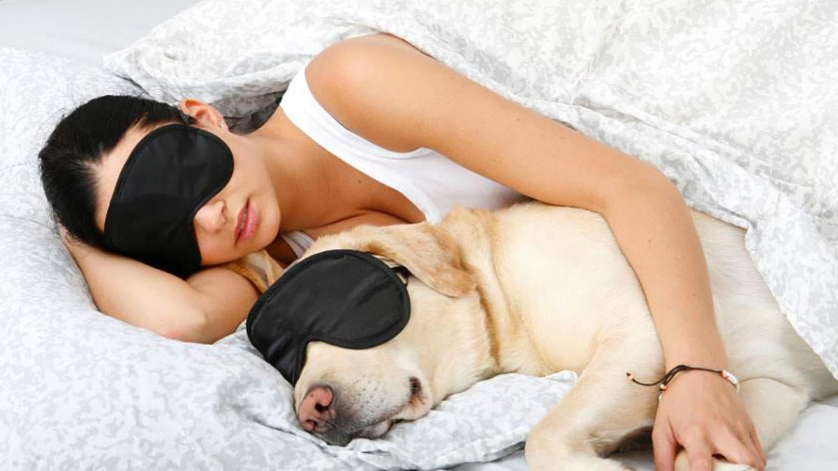 Здоровий сон – запорука продуктивного дня