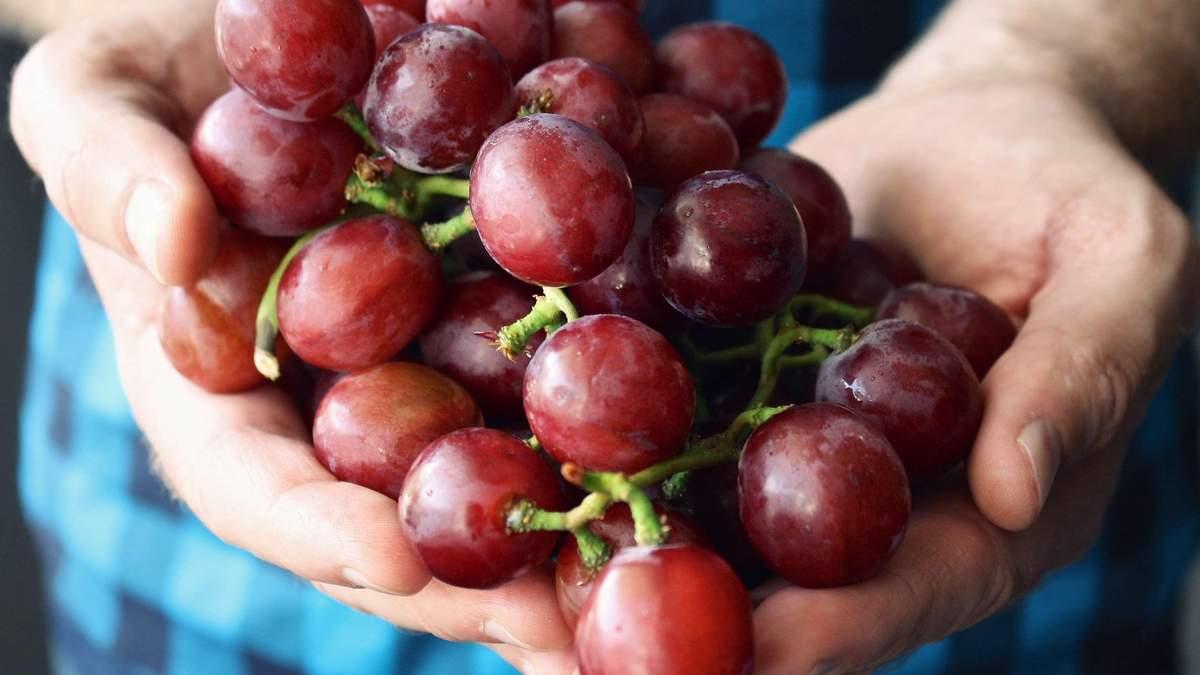Чим корисний виноград – вітаміни в винограді і корисні властивості