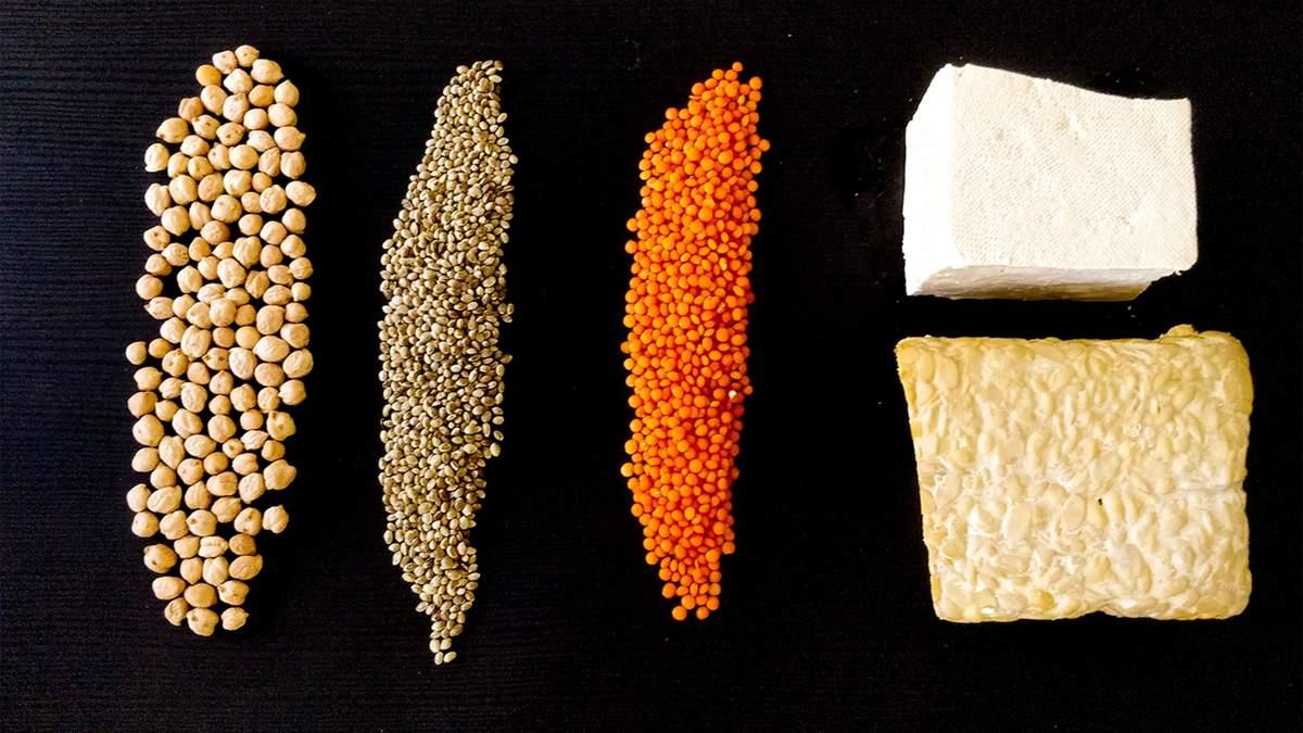 Протеїн – користь і шкода для організму