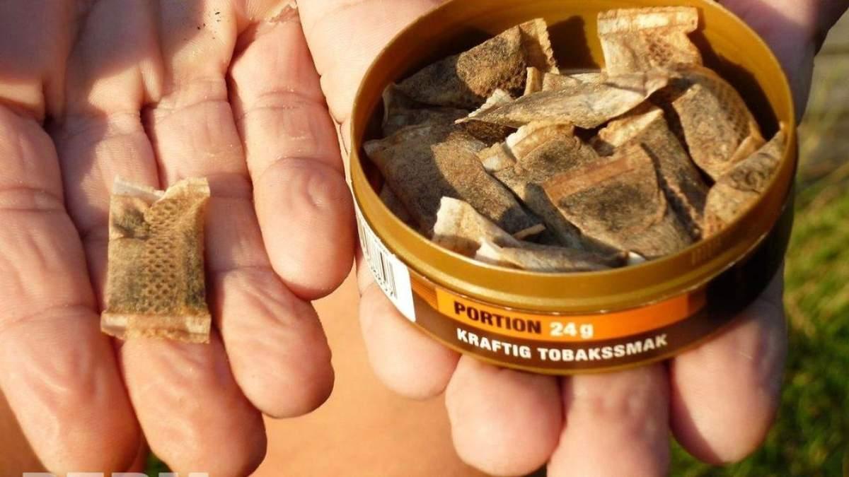 Снюс – что это, как действует, чем опасен жевательный табак