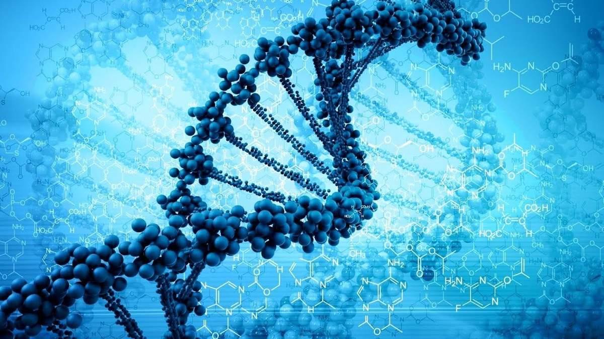 Винайшли спосіб редагувати геном