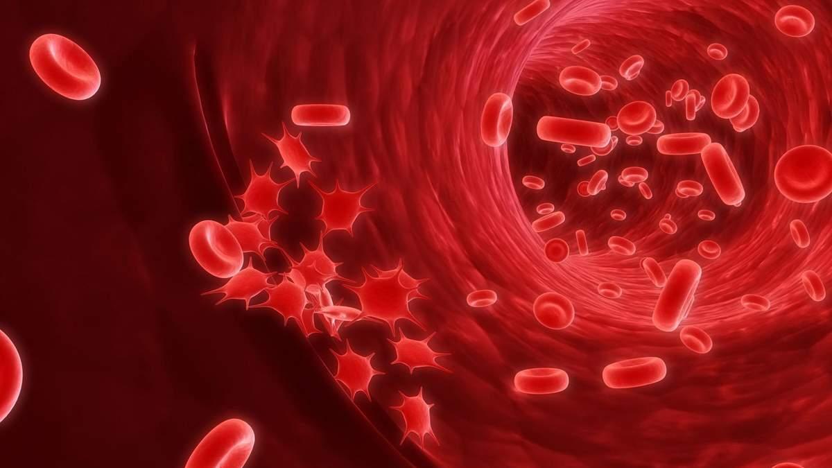 Очистить кровь от раковых клеток