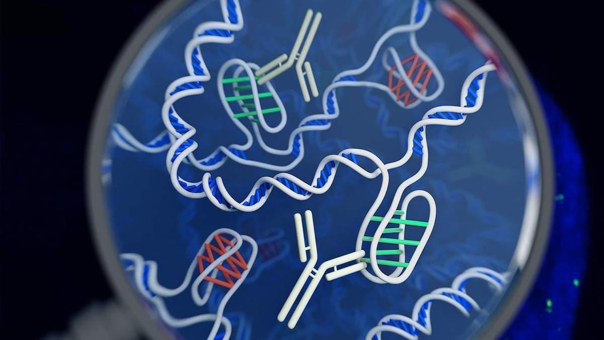 Темна матерія ДНК