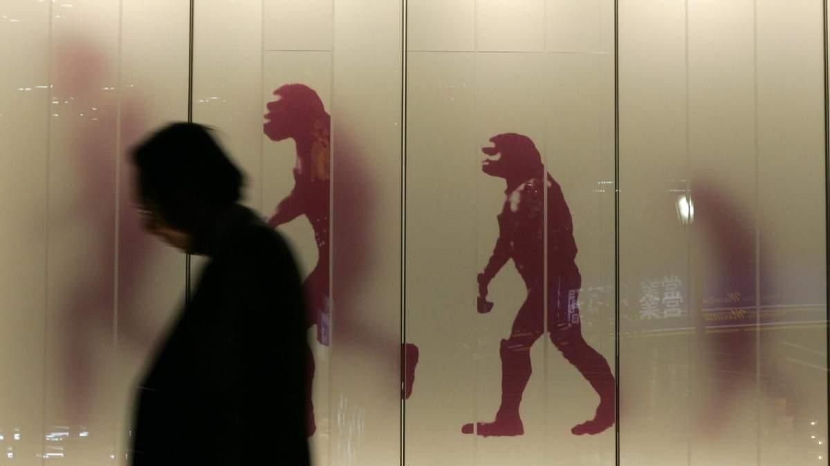 Наслідки еволюції