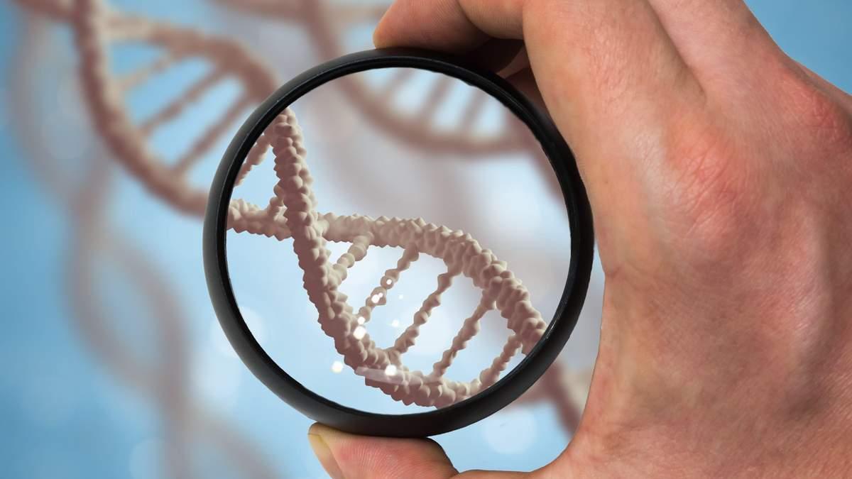 Продолжительность жизни определяется нашим ДНК