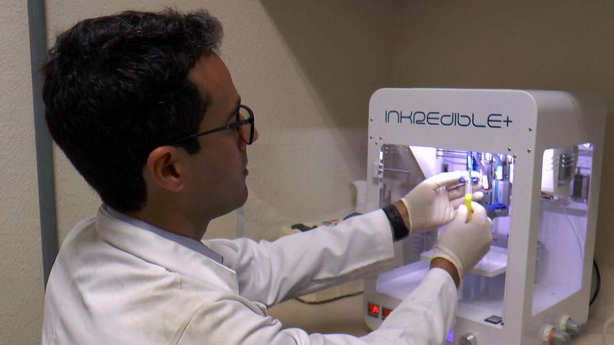 Вирощення печінки з клітин крові