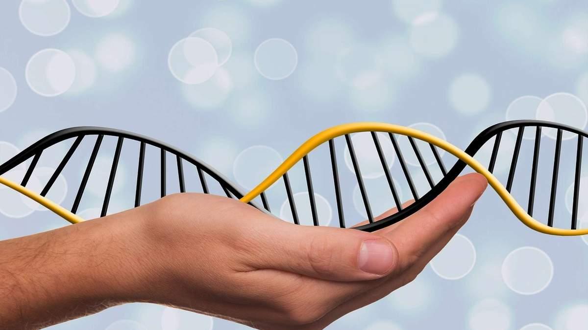 Генетика не имеет значительного влияния на риски заболеваемости