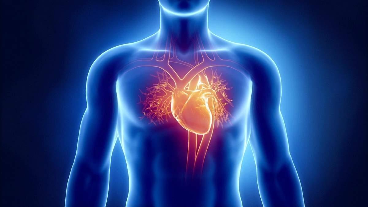 Терапія серця