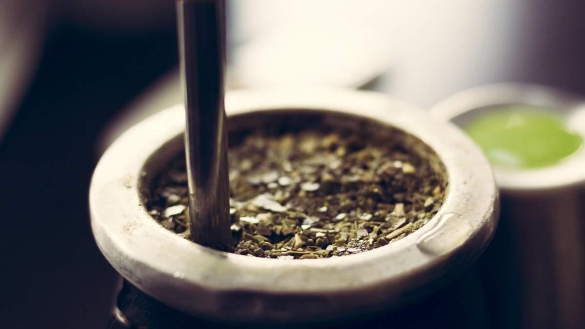 Польза чая мате