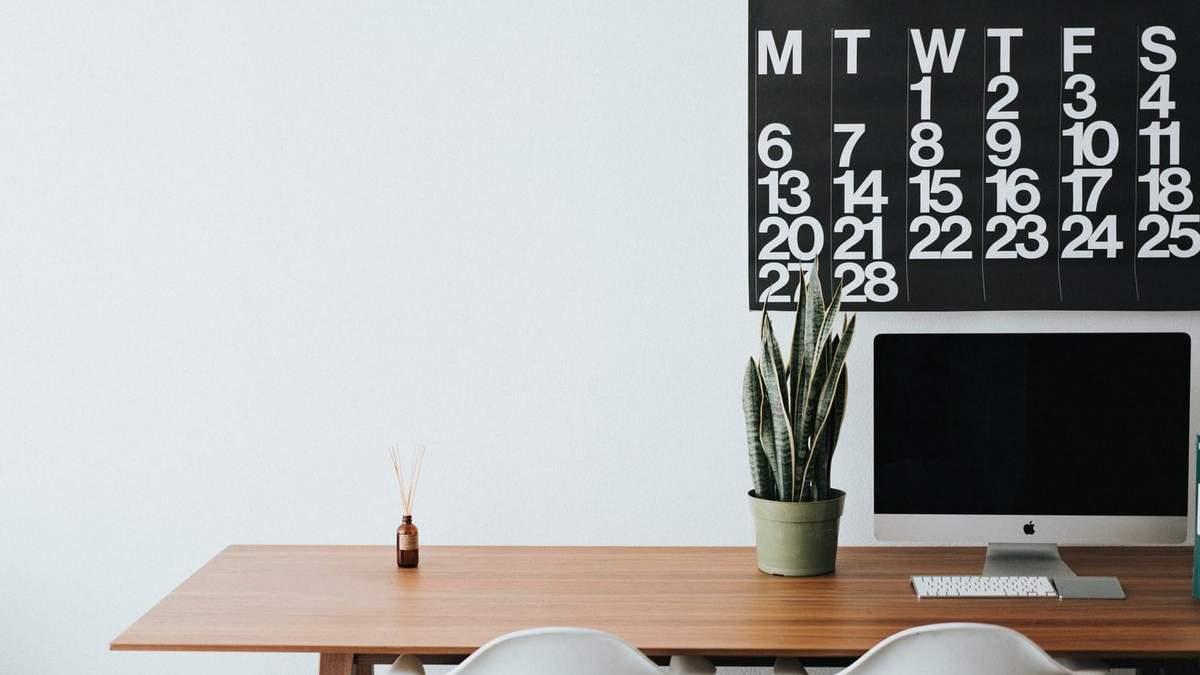Кімнатні рослини здатні боротись зі стресом