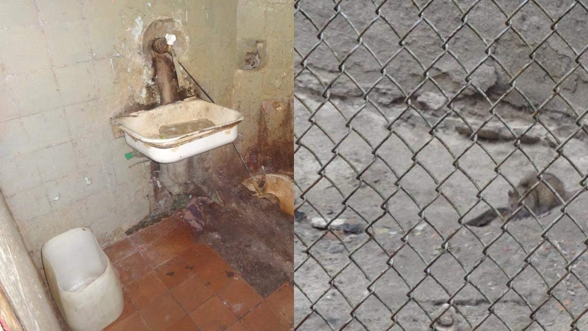 С крысами и без важных лекарств: появились шокирующие фото жизни осужденных во львовском СИЗО