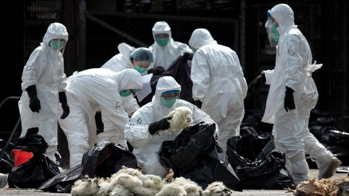 Пневмония в Китае
