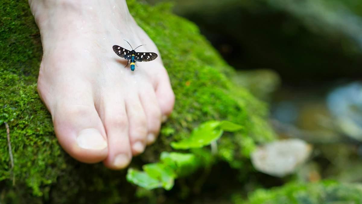 Грибок на ногах – як не заразитись, симптоми, лікування грибка стопи