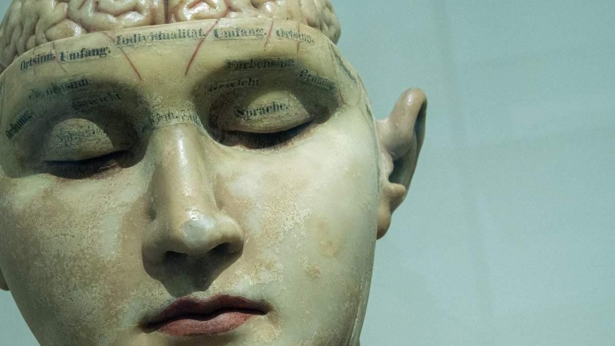 Знання двох мов має несподіваний вплив на розвиток Альцгеймера