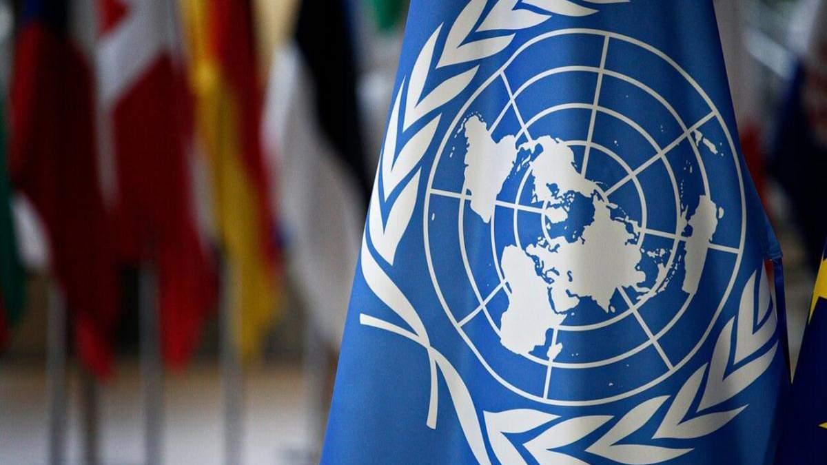 В ООН засудили насильство у Нових Санжарах